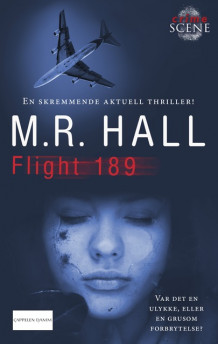 Flight 189 av Matthew Hall (Ebok)
